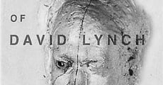Película The Short Films of David Lynch