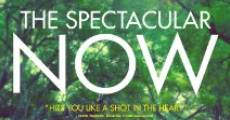 The Spectacular Now streaming