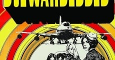 Filme completo The Stewardesses