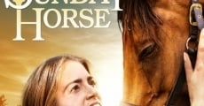 Filme completo The Sunday Horse