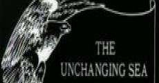 Película The Unchanging Sea