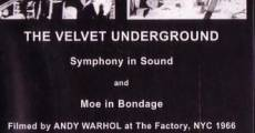 Película The Velvet Underground and Nico: A Symphony of Sound