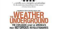 Ver película The Weather Underground