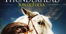 Ver película Thunderhead, hijo de Flicka