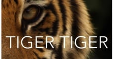 Tiger Tiger streaming