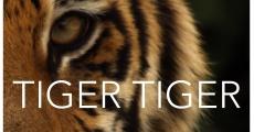 Tiger Tiger streaming