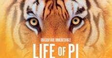 Película Tigre