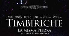 Película Timbiriche: La misma piedra