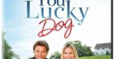 You Lucky Dog streaming