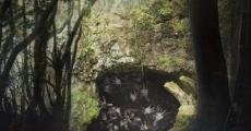 Película Toema: Munyeokul
