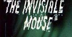 Ver película Tom y Jerry: El ratón invisible