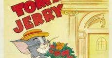 Ver película Tom y Jerry: Gato Casanova