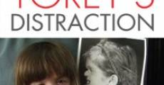 Torey's Distraction (2009)