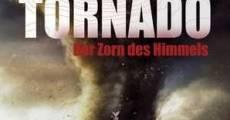 Tornado: La furia del cielo (2006) stream