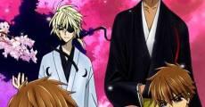 Ver película Tsubasa: Shunraiki