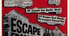Película Túnel 28