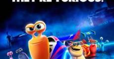 Turbo film complet