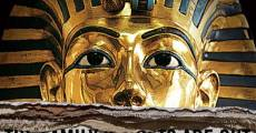 King Tut Unwrapped (2010)