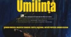 Umilinta (2011) stream
