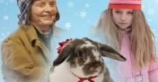 Le Noël de Julia streaming