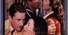 Película Un marido para Anna Zaccheo
