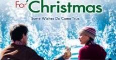 Película Un novio por Navidad