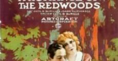 Película Un romance en los Redwoods