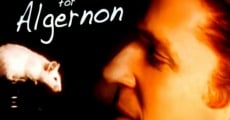 Filme completo Flowers For Algernon