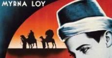 Película Una noche en El Cairo
