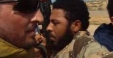 Under Fire: Journalists in Combat (2011) stream