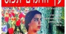 Película Under the Domim Tree