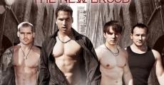 Vampire Boys 2: The New Brood (2013) stream