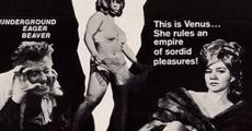 Película Venus in Furs