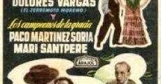 Película Veraneo en España