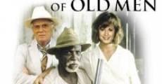 Película Viejos recuerdos de Louisiana