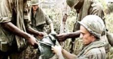 Ver película Vietnam. Los archivos perdidos