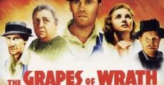 Filme completo Vinhas da Ira