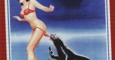 Ver película W, la foca