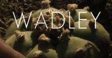 Película Wadley