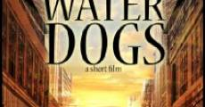 Water Dogs (2014) stream
