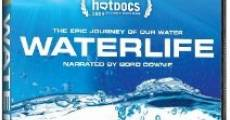 Película Waterlife
