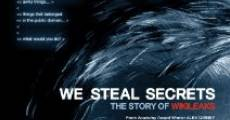 We Steal Secrets: The Story of WikiLeaks (2013) stream