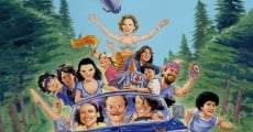 Wet Hot American Summer streaming
