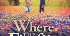Where the Fireflies Die (2014) stream