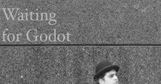 Ver película While Waiting for Godot