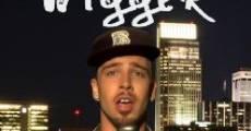 Wigger (2010) stream