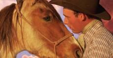 Película Wild Horse, Wild Ride