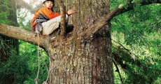 Filme completo Wood Job!