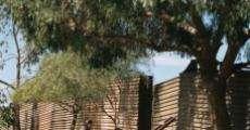 Filme completo XV en Zaachila