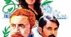 Zinda Bhaag streaming